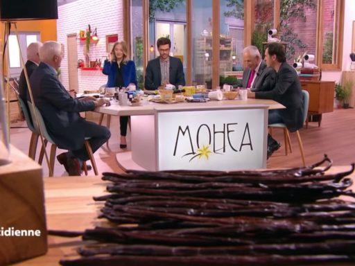 Reportage vanille sur Mohea