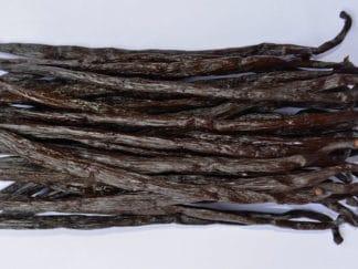 Congo vanilla pods
