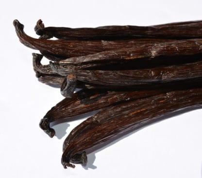 Vanilla tahitensis de Maurice