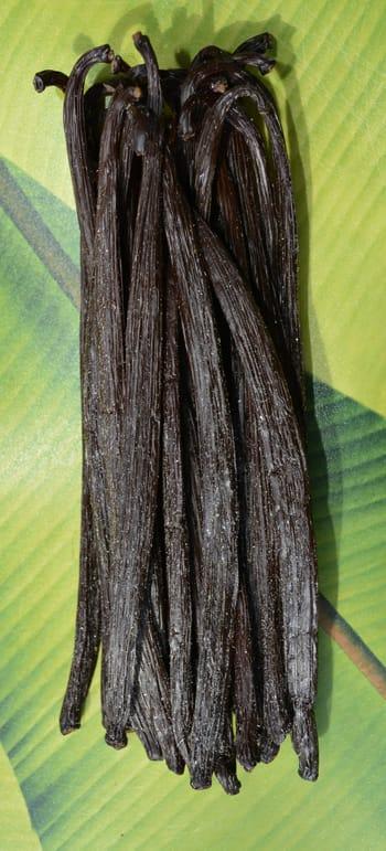 Vanille givrée de Nouvelle-Calédonie