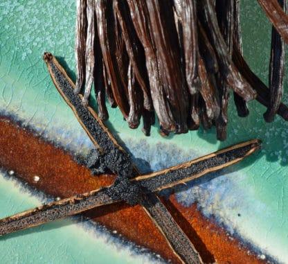 Grains de vanille dans gousses de vanille de Nouvelle-Calédonie