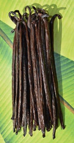 Grandes gousses du Guatemala