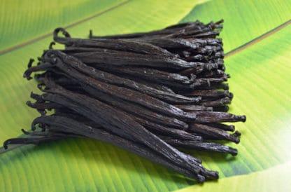 Vanille de Papouasie Nouvelle-Guinée