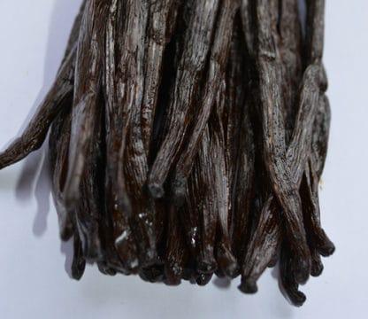 gousses de vanille des Tonga