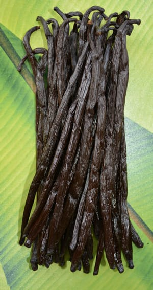 Gousses de vanille du Congo