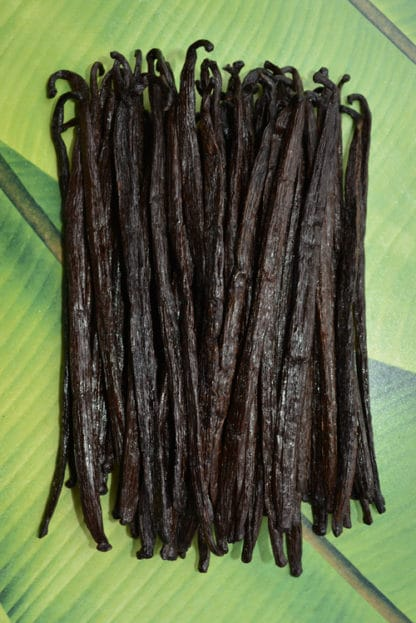 Vanille de Madagascar