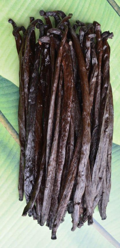 Gousses de vanille de PNG