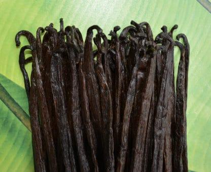 Vanille gourmet de Madagascar