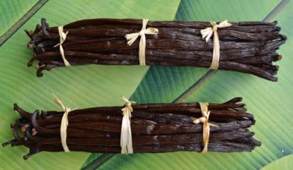 Vanille de Nouvelle-Calédonie
