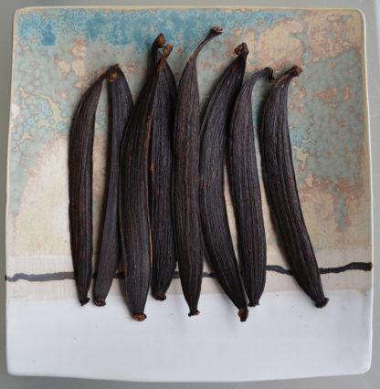 Vanille de Guyane