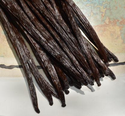 Vanille de La Reunion chez Mohea 16 a 18 cm