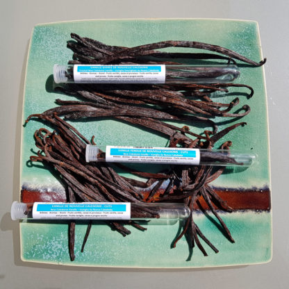 New-Caledonia-vanilla-pods-for-icecream
